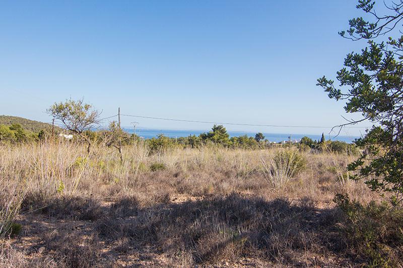 Grote grond te koop in Es Cubells San Jose
