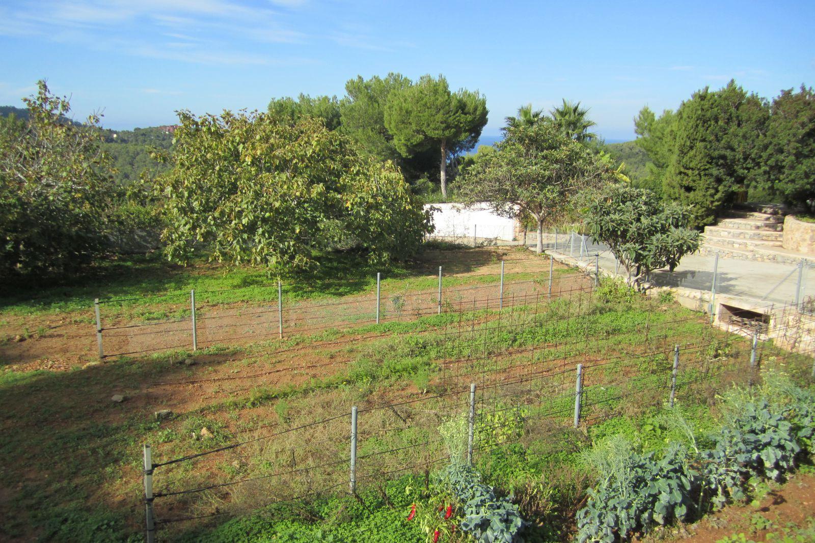 Villa met uitzicht op de zee aan de westkust van Ibiza