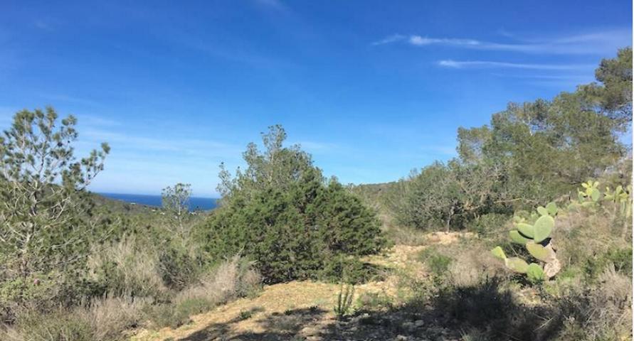 landgoed te koop in Cala Vadella