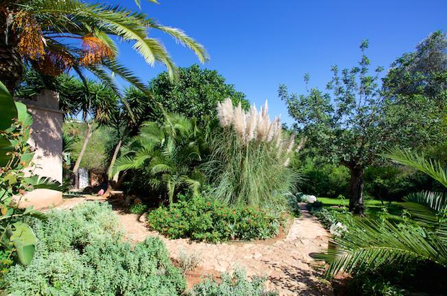 Mooie finca in de buurt van Santa Gerdrudis en San Juan