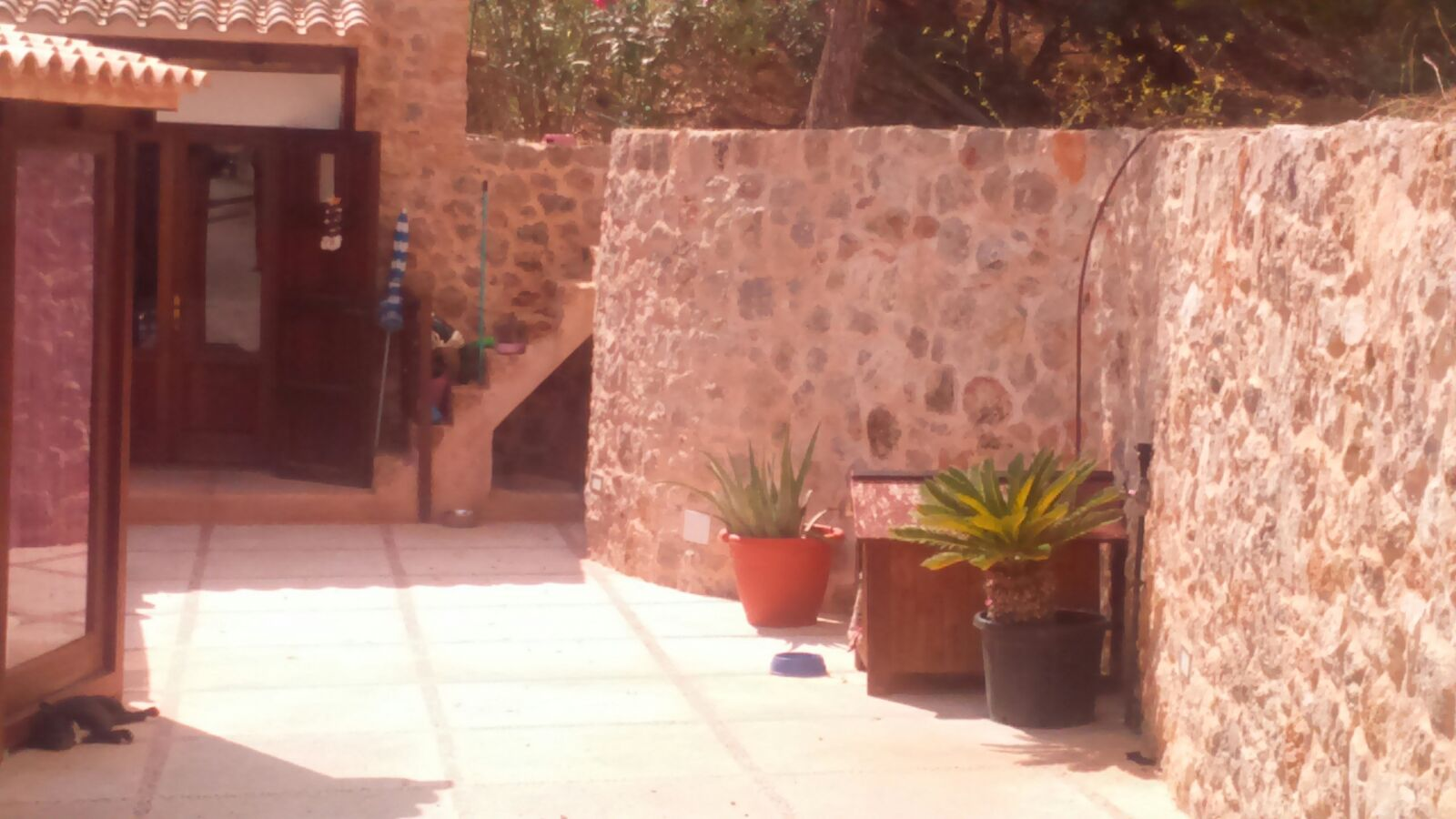 Ibizenko finca met groot perceel te koop in Ibiza