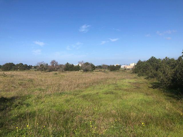 Perceel in Cala Bou op Ibiza met 16.000m2 te koop