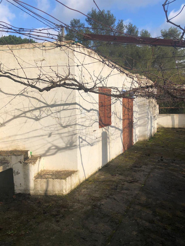Landhuis in Santa Gertrudis met groot land