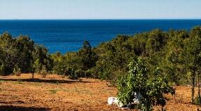 Huis te koop met Blakstad-project op loopafstand van het strand