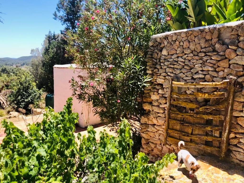 Mooie finca volledig gerenoveerd in San Jose met prachtig uitzicht op de velden en de zee